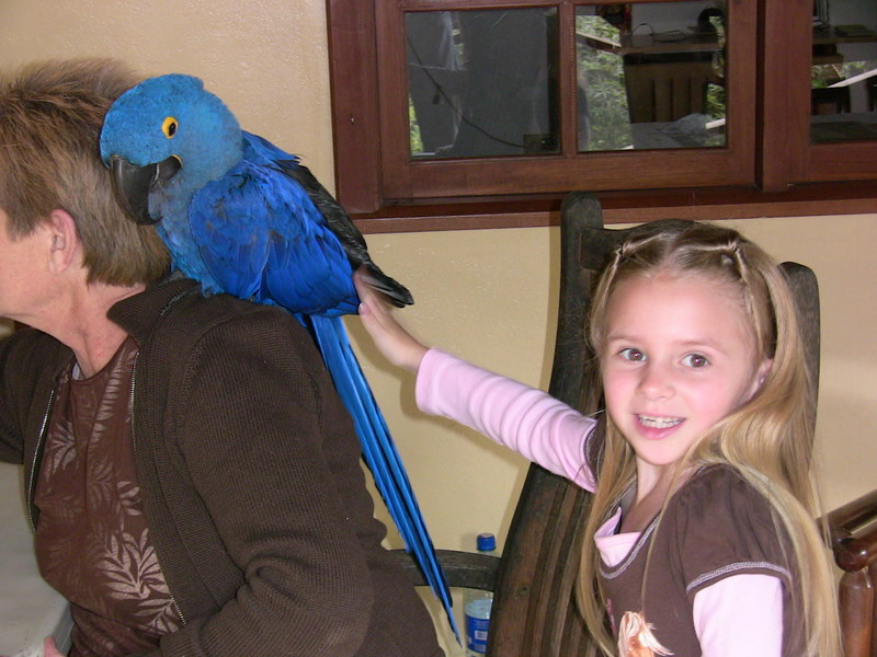 Emily petting a macaw