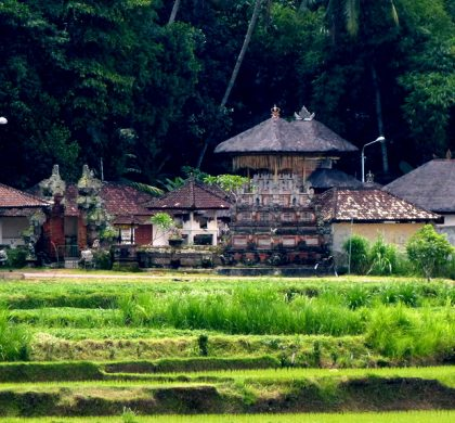 First impressions of Ubud, Bali, Indonesia