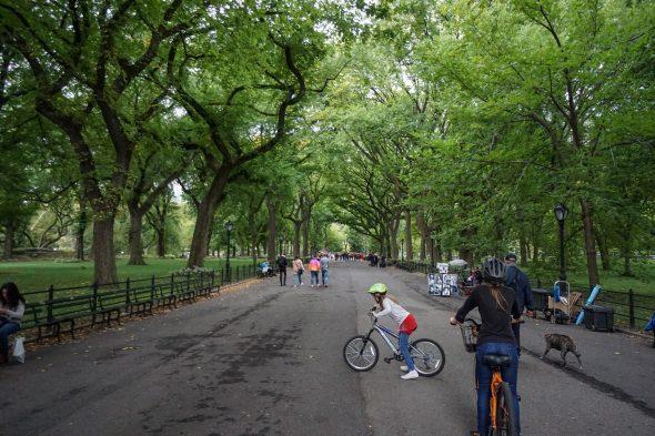 newyork-01548