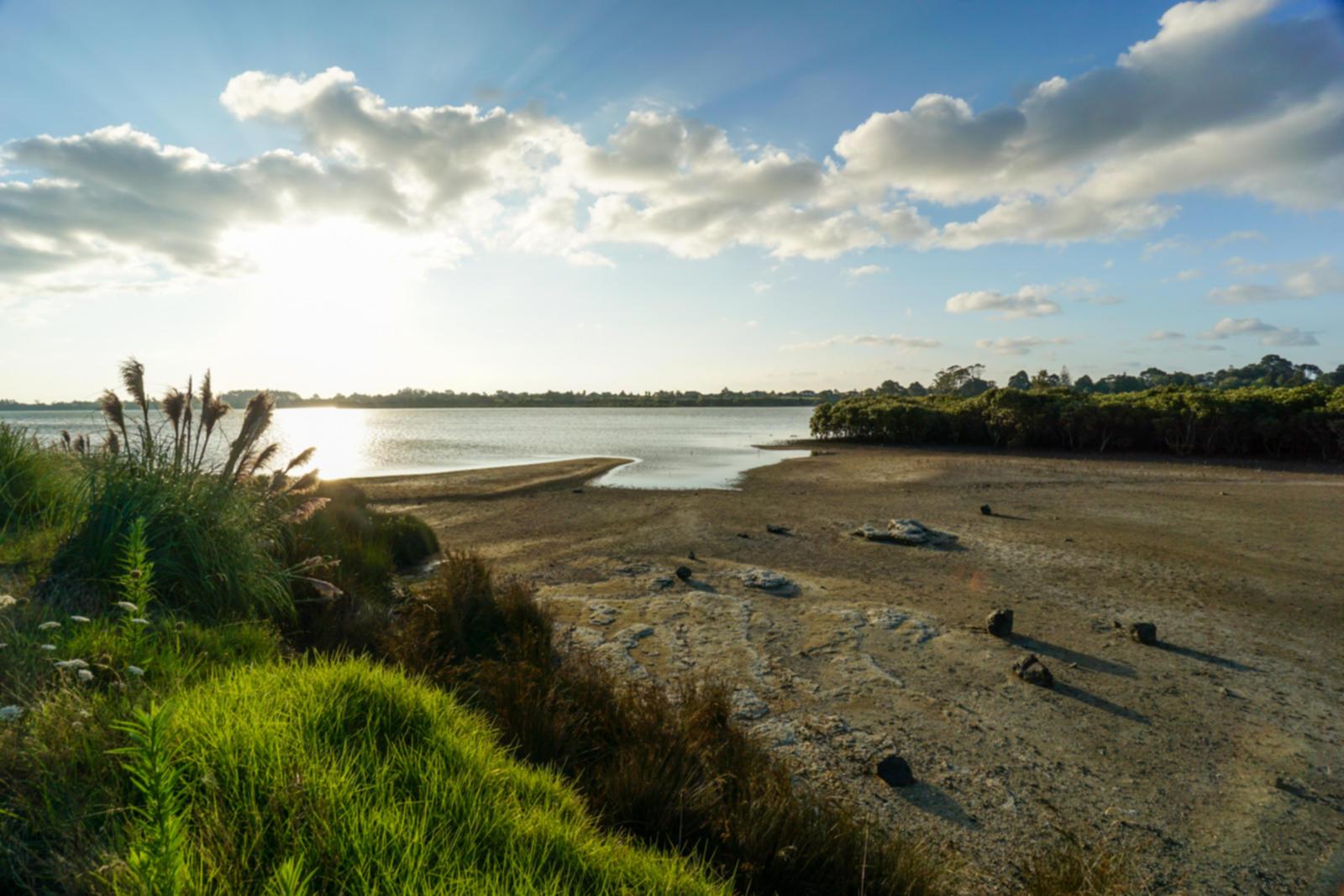 New Zealand North Island Encounters