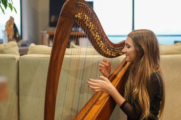 harp-09588