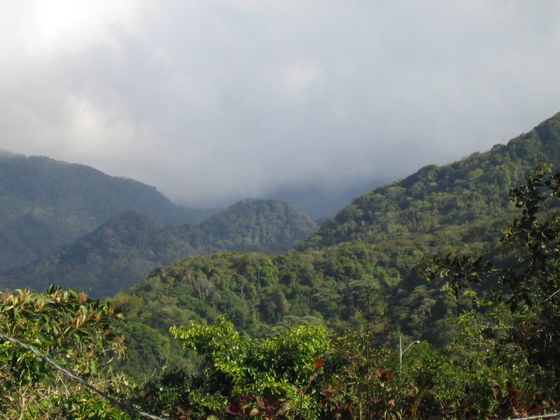 A view on the drive from El Valle to Boquete
