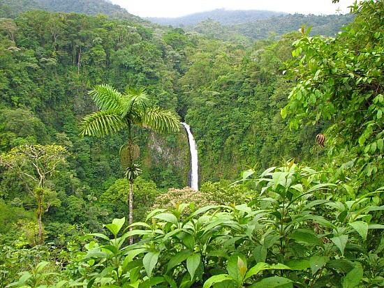 We're Moving to Costa Rica